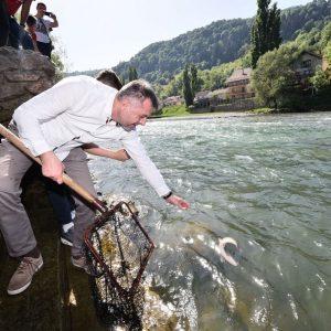 Први пут порибљавање Врбаса младицом