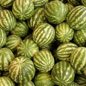 У понуди 38 локација за продају печеног кукуруза и лубеница