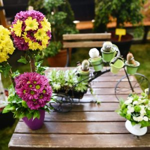 """Десет излагача на """"Фестивалу цвијећа"""""""