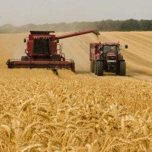 За подстицаје пријављена 493 пољопривредника