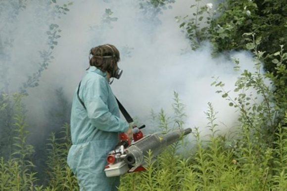 У понедјељак увече сузбијање комараца