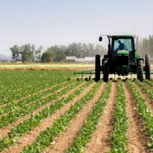Подршка пољопривреди: Подстицаји за 402 пољопривредника