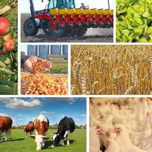 Јавни позив: Додјела подстицаја и премија за развој пољопривредне производње