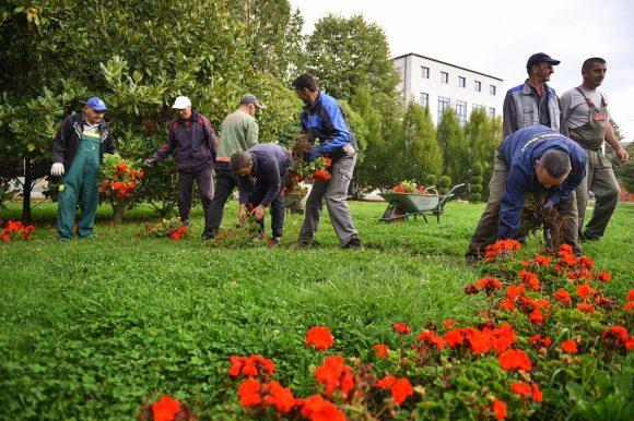 10.000 цвјетова за љепши град