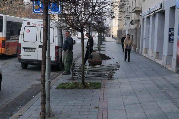 Нова стабла у Улици Краља Петра I Карађорђевића